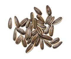 Масло семян подсолнечника